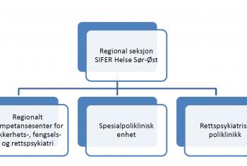Bilde organisasjonskart SIFER Sør-Øst